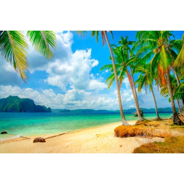 Fotomural Playa paradisiaca - Fotomurales paisajes - Vinilos ...