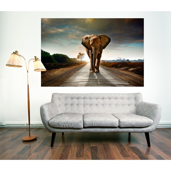 elefante carretera