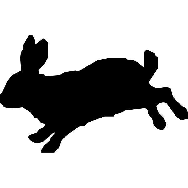 Conejo saltando