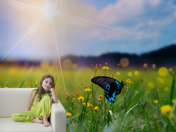 Campo con mariposa
