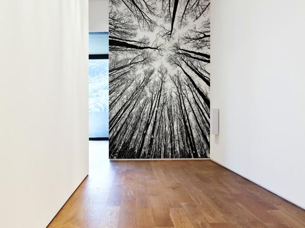 Copas de árboles en blanco y negro