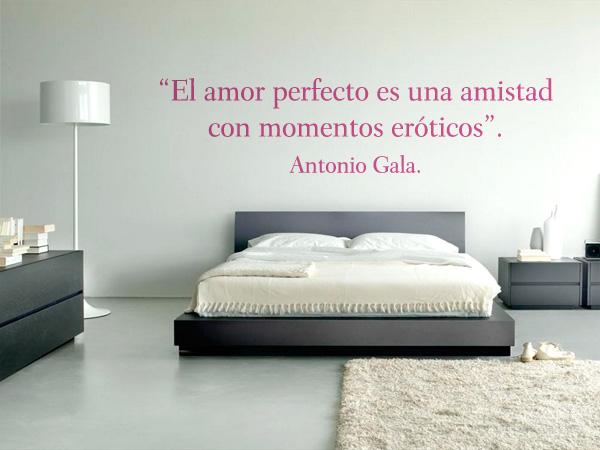 El amor perfecto es una amistad con momentos eróticos