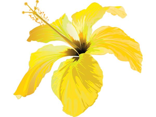 Vinilo decorativo flor amarilla